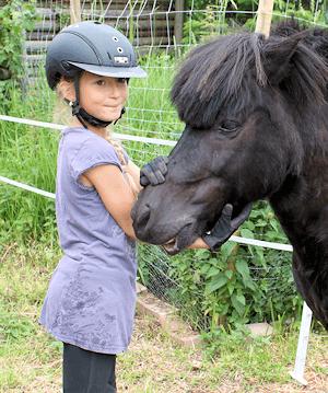 Pony Schleswig-Holstein